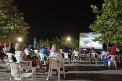 20-ΘΕΡΙΝΟ-ΣΙΝΕΜΑ-ΑΓΝΑΝΤΑ-2020